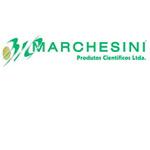 23-marchesini